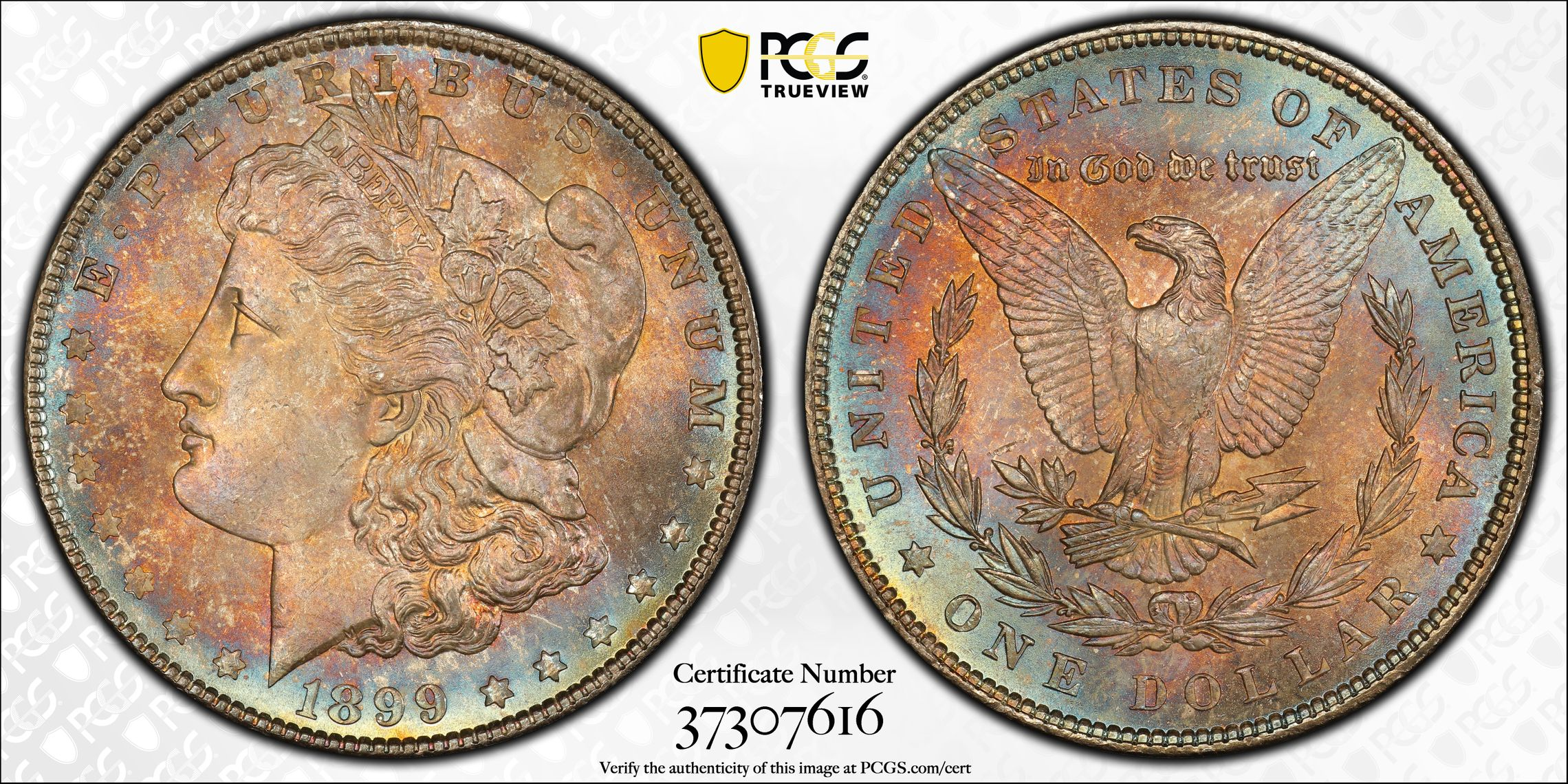 1899 Morgan Dollar MS66+ PCGS CAC Gloriously Toned P-Mint