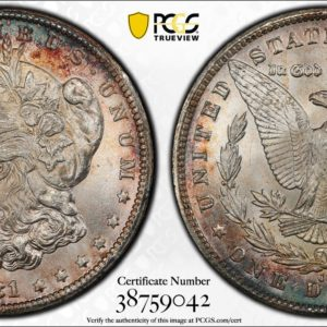 1881-CC Morgan Dollar, VAM-2, Beautiful Rim-Toned MS64 PCGS Example