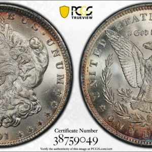 1891-CC Morgan Dollar MS63 PCGS, Nicely Toned VAM-3 'Spitting Eagle'
