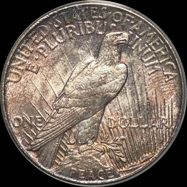 1921 Peace Dollar MS63 PCGS 'Rose Relief'